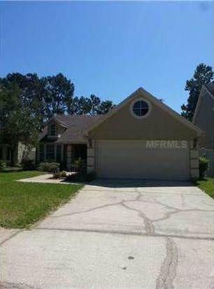 14517 Thornfield Ct, Tampa, FL 33624