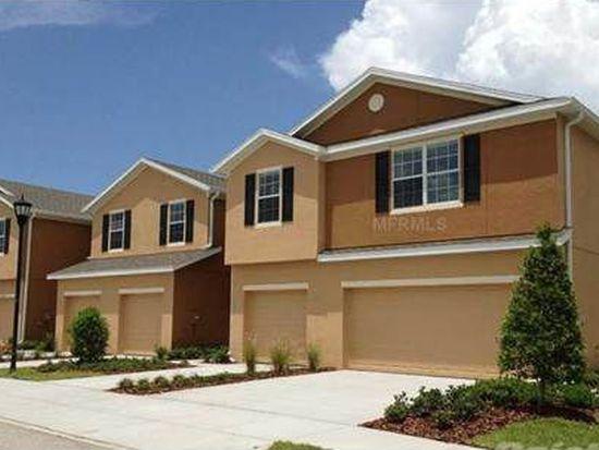 8915 Turnstone Haven Pl, Riverview, FL 33578