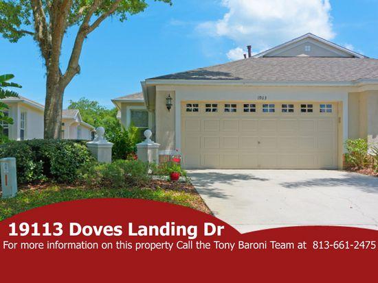 19113 Doves Landing Dr, Tampa, FL 33647