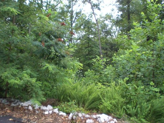 Forest Den LOT 7, Nebo, NC 28761