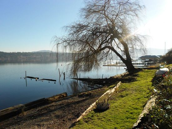 1650 W Lake Sammamish Pkwy NE, Bellevue, WA 98008