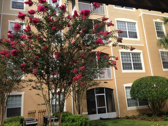 6451 Old Park Ln UNIT 301, Orlando, FL 32835