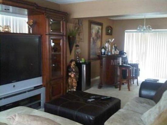 2911 Amber Oak Dr, Valrico, FL 33594