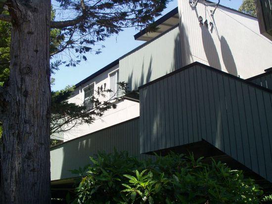 247 Boardwalk Ave APT D, San Bruno, CA 94066