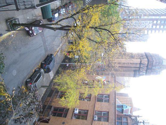 305 E 88th St APT 4A, New York, NY 10128