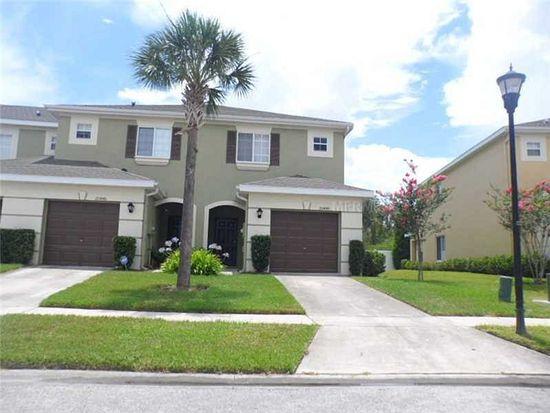 20448 Needletree Dr, Tampa, FL 33647