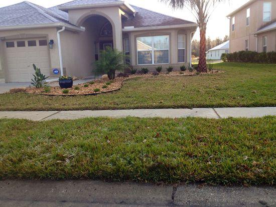 4706 Point O Woods Dr, Wesley Chapel, FL 33543