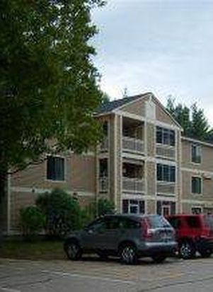 19 Saco St UNIT 33, Center Conway, NH 03813