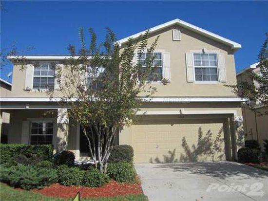 11148 Creek Haven Dr, Riverview, FL 33569