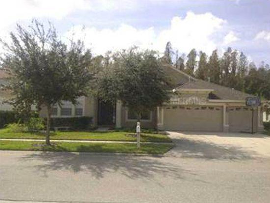 1415 Salmonberry St, Wesley Chapel, FL 33543