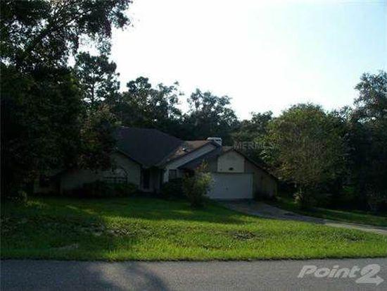 18505 Sugarberry Ln, Spring Hill, FL 34610