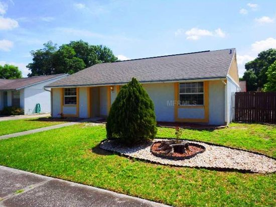 16009 Splitlog Dr, Tampa, FL 33618