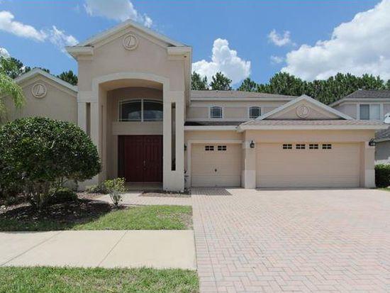 10411 Canary Isle Dr, Tampa, FL 33647