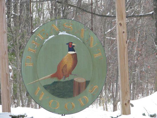 18 Pheasant Woods, Colchester, VT 05446