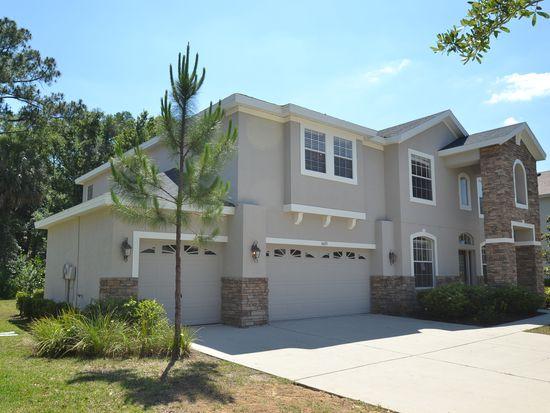 6625 Thornton Palms Dr, Tampa, FL 33647