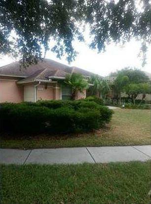 10317 Carroll Cove Pl, Tampa, FL 33612