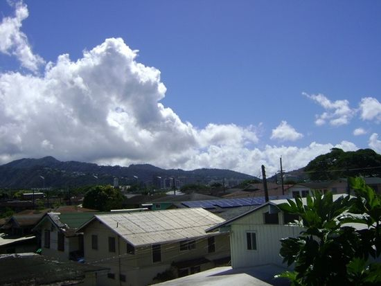 1103 Kokea St APT K305, Honolulu, HI 96817