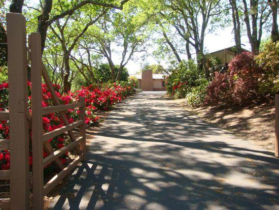 393 Golden Hills Dr, Portola Valley, CA 94028