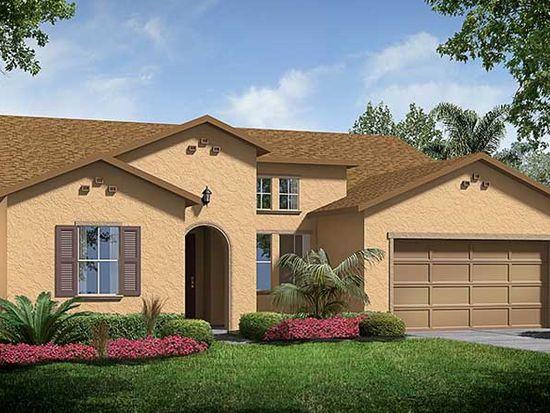 14204 Cheshire Acres Pl, Tampa, FL 33618