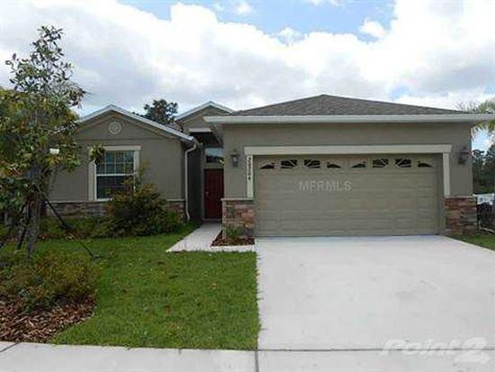 20204 Merry Oak Ave, Tampa, FL 33647