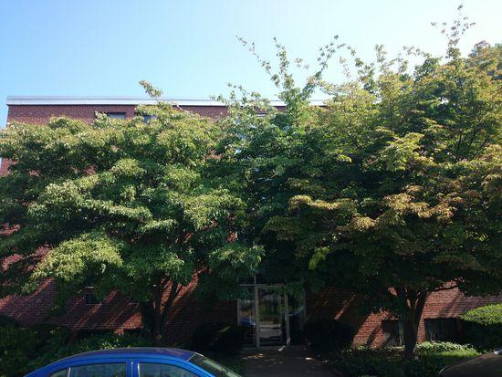 28 Brentwood St APT 1, Boston, MA 02134