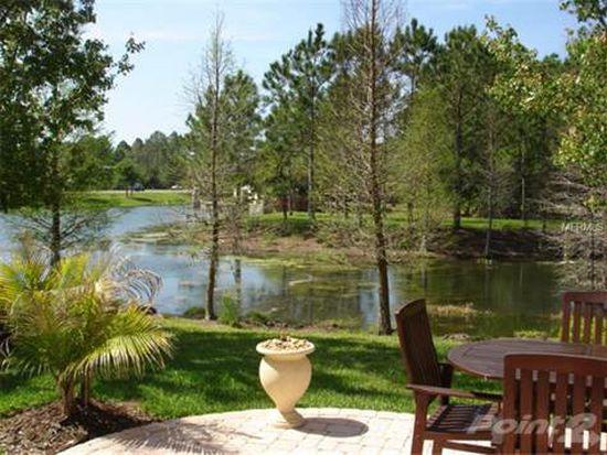 14463 Mirabelle Vista Cir, Tampa, FL 33626