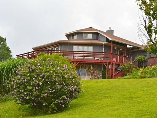 662 Macks Mountain Rd NW, Indian Valley, VA 24105