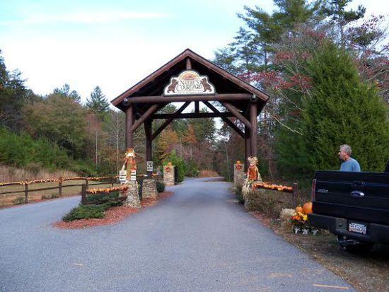 710 Walker Ridge Rd, Mineral Bluff, GA 30559