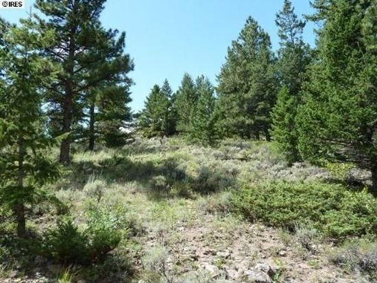 626 Delaware Ct, Red Feather Lakes, CO 80545