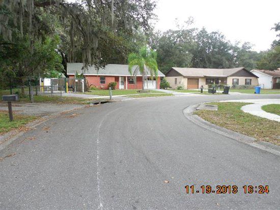 523 Oakbriar Pl, Brandon, FL 33510