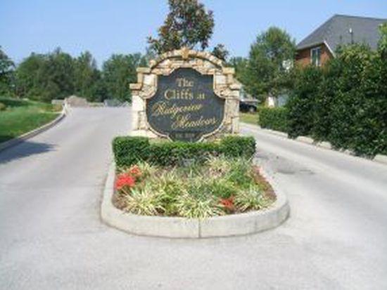 1127 Cliffview Cir, Gray, TN 37615