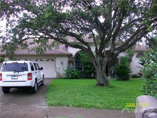 10031 Cypress Shadow Ave, Tampa, FL 33647