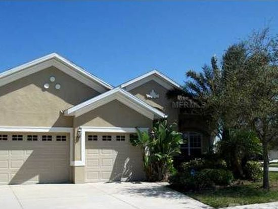 20401 Walnut Grove Ln, Tampa, FL 33647