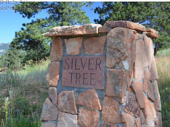 1794 Silver Tree Ln, Estes Park, CO 80517