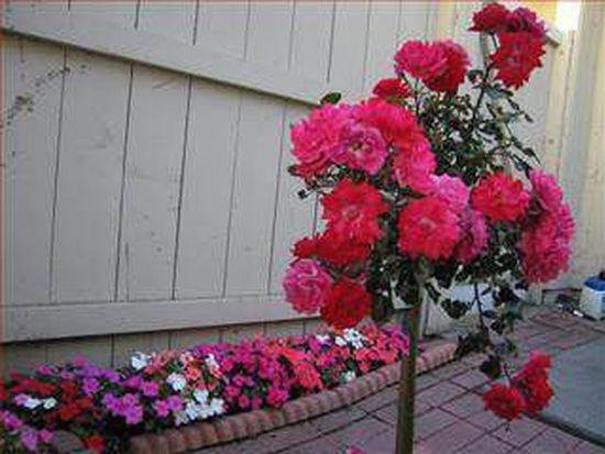 3017 Kaiser Dr UNIT B, Santa Clara, CA 95051