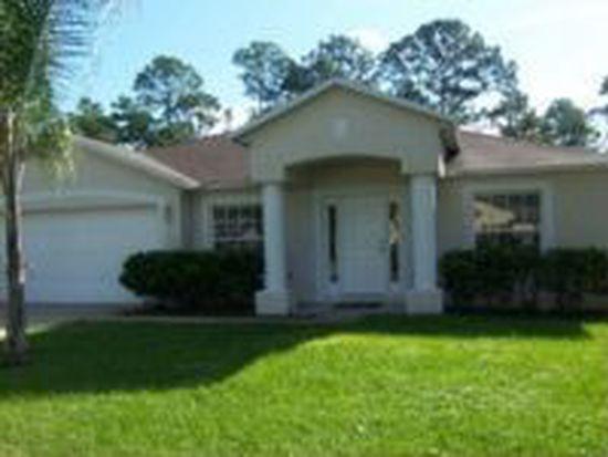 317 Shadydale Ct, Deltona, FL 32738