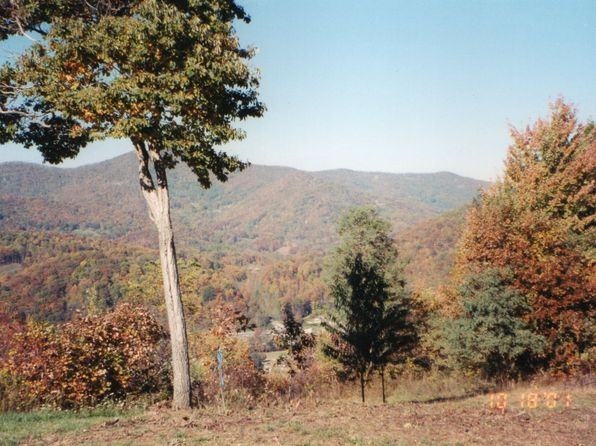 null bed null bath Vacant Land at  Davis Ln Waynesville, NC, 28786 is for sale at 39k - 1 of 12