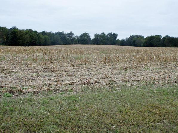 null bed null bath Vacant Land at 0 Devers Rd Metropolis, IL, 62960 is for sale at 60k - 1 of 9