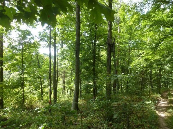 null bed null bath Vacant Land at 002 Graded Rd Williams, IN, 47470 is for sale at 162k - 1 of 12