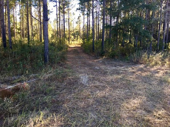 null bed null bath Vacant Land at 0 Forrester Pkwy Leesburg, GA, 31763 is for sale at 60k - 1 of 3