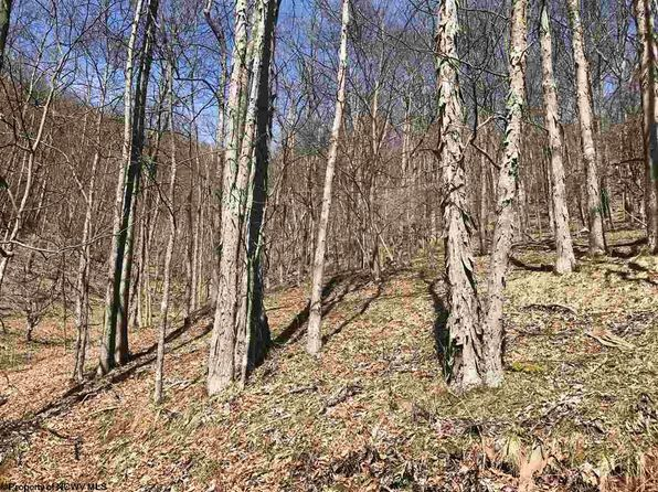 null bed null bath Vacant Land at 5 High Mountain St Harman, WV, 26260 is for sale at 19k - 1 of 2