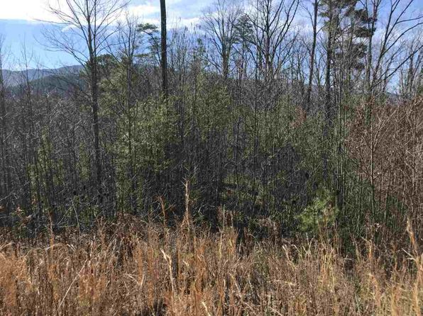 null bed null bath Vacant Land at  Lot 31 Sonshine Ridge Rd Cosby, TN, 37722 is for sale at 56k - 1 of 10