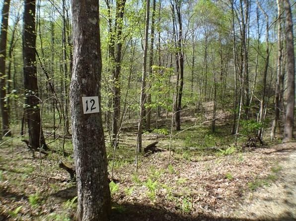 null bed null bath Vacant Land at 00 Deweese Rd Topton, NC, 28901 is for sale at 37k - 1 of 10