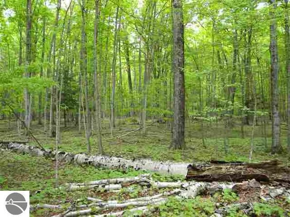 null bed null bath Vacant Land at W Macfarlane Rd Glen Arbor, MI, 49636 is for sale at 199k - 1 of 5