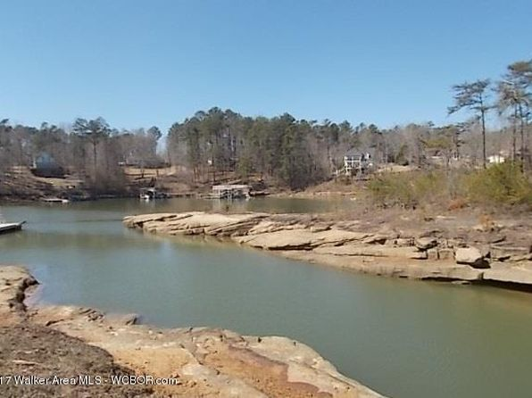 null bed null bath Vacant Land at 3 Bear Branch Cv Arley, AL, 35540 is for sale at 70k - 1 of 3
