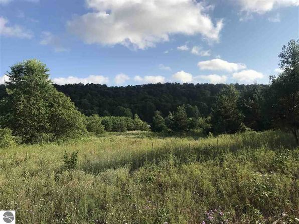 null bed null bath Vacant Land at  Parcel B N Schneider Rd Rapid City, MI, 49676 is for sale at 26k - 1 of 20