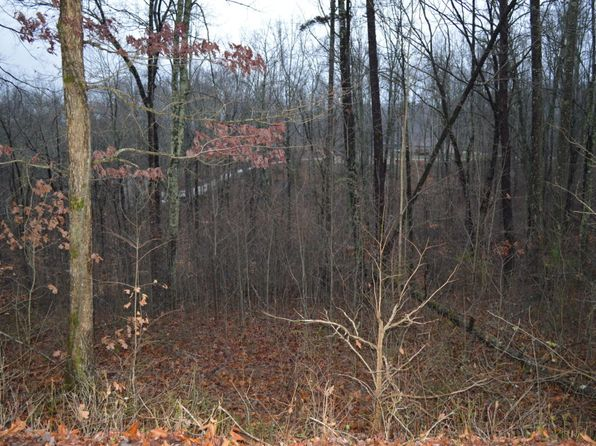 null bed null bath Vacant Land at  Cove Norris Rd Caryville, TN, 37714 is for sale at 18k - 1 of 5