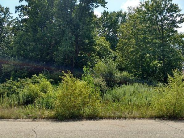 null bed null bath Vacant Land at 4920 THELMA ST ROOTSTOWN, OH, 44272 is for sale at 30k - 1 of 2