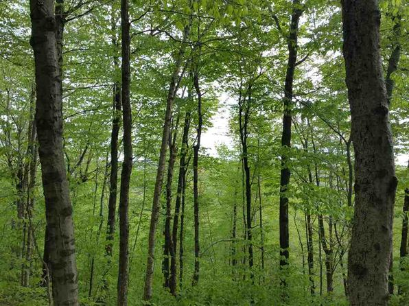 null bed null bath Vacant Land at  Howe Pond Rd Readsboro, VT, 05350 is for sale at 40k - 1 of 29