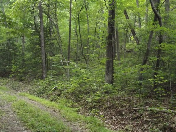 null bed null bath Vacant Land at 00 Pine Meadows Rd Bryson City, NC, 28713 is for sale at 18k - 1 of 5